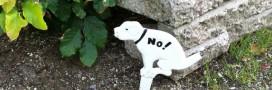 Crottes de chien – le village qui pratique le retour à l'envoyeur