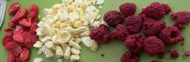 Testés pour vous: les fraises et framboises lyophilisées