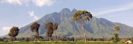Total va-t-il épargner le parc des Virunga?