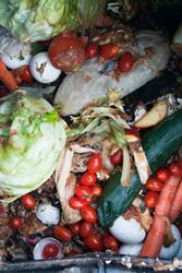 -bélgica residuos de comida-3