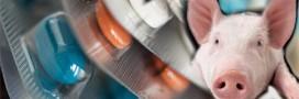 amoxil for uti in pregnancy