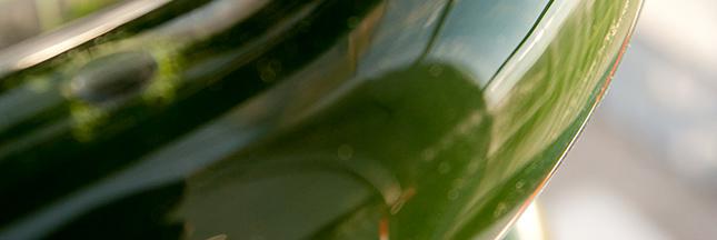 Des PME françaises produisent du biocarburant aux algues