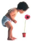 bébé couche lavable et fleur
