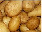 pommes-de-terre-frites