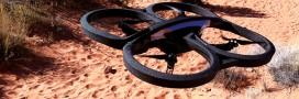 Braconnage: les drones et Google au secours de la faune sauvage
