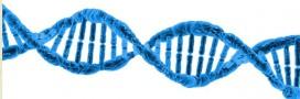 La biologie moléculaire au secours de l'environnement