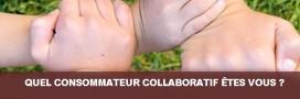 Les 4 types de consommateurs collaboratifs
