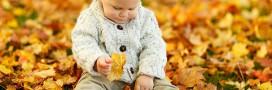 Les gestes au jardin bio pour novembre: le potager, jardiner avec la Lune