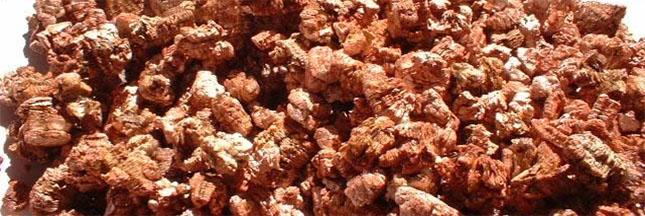 Usages, avantages, dangers de la vermiculite et comment s'en protéger