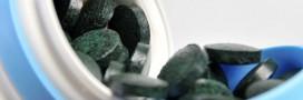 La Grenouille bleue qui produit de la spiruline verte
