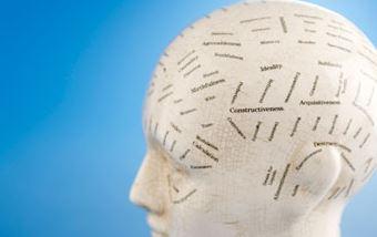 biais-cerveau
