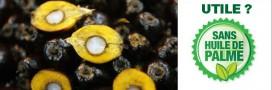 L'huile de palme: une controverse inutile?