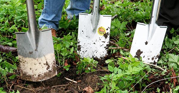 jardinage-beche-jardin-bio-01