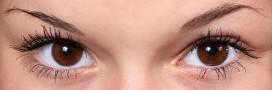 Beauté bio: comment bien dessiner ses sourcils