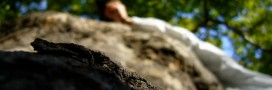 La sylvothérapie, quand la forêt pousse notre santé