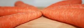 Les teikei: le Japon, à la pointe… du commerce d'aliments bio de proximité!