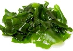 Wakame algue comestible