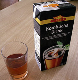 kombucha-boisson-champignon allergie alimentation