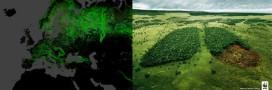 Déforestation dans le monde en 10 données clées