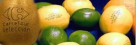 Etiquettes fruits et légumes: et si on les remplaçait?