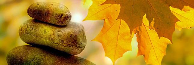 meditation-contemplation-feuilles-automne-cailloux-equilibre-zen-esprit-ban