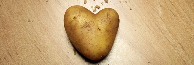 Jardinage - À faire en avril : planter des pommes de terre