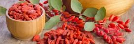 Recette: une salade de fruits aux baies de Goji