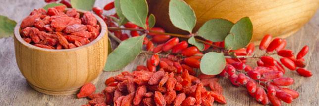 Recette : une salade de fruits aux baies de Goji