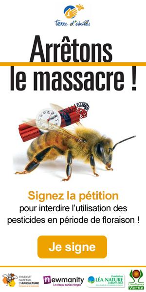 banniere_Terre_d_abeilles_300x600px