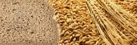 Tension sur les marchés alimentaires mondiaux