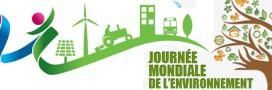 La Journée mondiale de l'environnement ne sert à rien