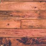 Protéger le bois avec une lasure écologique et naturelle...