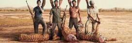 Braconnage – Le WWF veut tous les arrêter! et a raison.