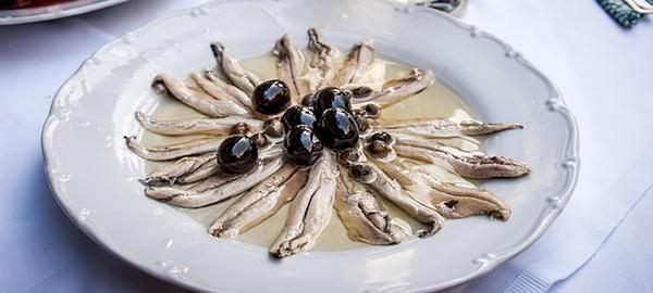 anchois-peche-poissons-petits-pelagiques-01