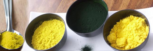 Roquette nourrit la planète avec des farines de micro-algues