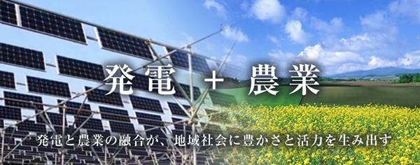 gogo-islands-ukujima-japon-solar-sharing-03
