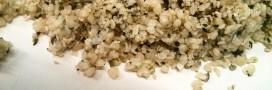 Test produit: graine de chanvre, des oméga 3 à foison