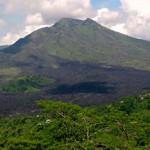 Forêt tropicale : l'Indonésie annonce un plan contre la déforestation