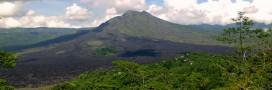 Forêt tropicale: l'Indonésie annonce un plan contre la déforestation