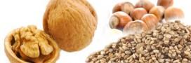 Cancer, arrêt cardiaque: étude sur les bénéfices des noix