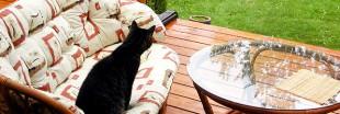 Un programme d'entretien idéal pour entretenir ou rénover sa terrasse en bois