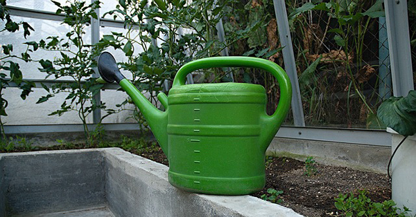 jardin-arrosage-tuyau-jardinier-ete-01 arrosage arroser le jardin économiser l'eau jardinage écologique
