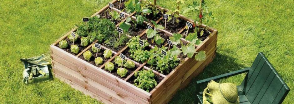 Micro-jardin 4