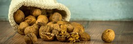 Les fibres alimentaires: sources de bienfaits