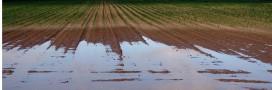 Le sol va-t-il se dérober sous nos pieds?