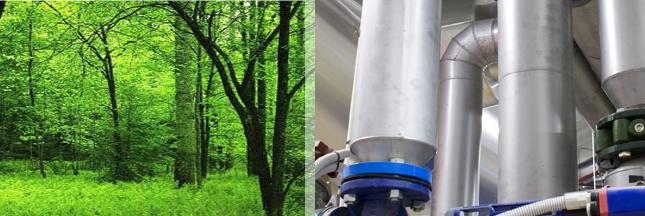 trigénération-biomasse