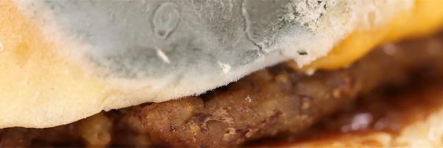 Vidéo : un burger moisit-il en 30 jours ?