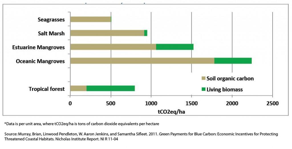 capture-naturelle-carbone