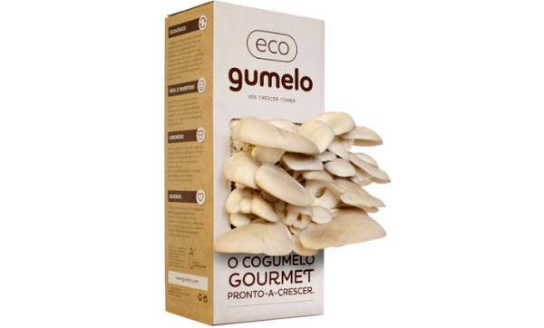 eco-gumelo-champignons-legumes-boite-carton