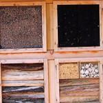 J'installe un hôtel à insectes dans mon jardin
